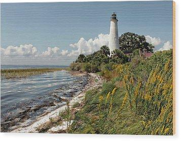 The Lighthouse At St. Marks Wood Print by Lynn Jordan