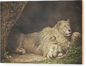 The Lion Sleeps Tonight Wood Print by Trish Tritz