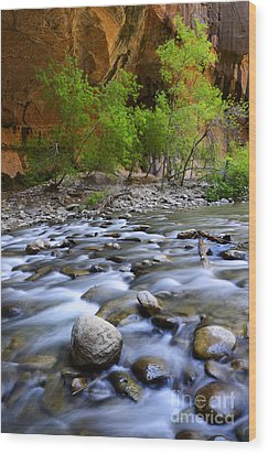 The Narrows A Place To Pause Wood Print by Bob Christopher