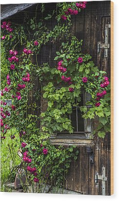 The Old Barn Window Wood Print by Debra and Dave Vanderlaan