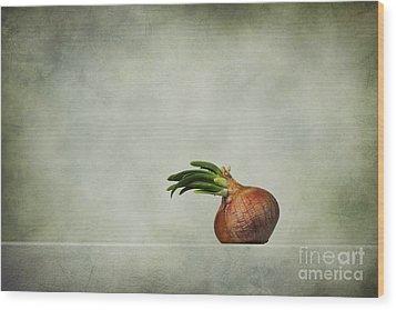The Onions Wood Print by Diana Kraleva