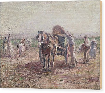 The Potato Pickers Wood Print by Harry Fidler