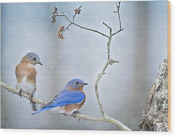 The Presence Of Bluebirds Wood Print by Bonnie Barry