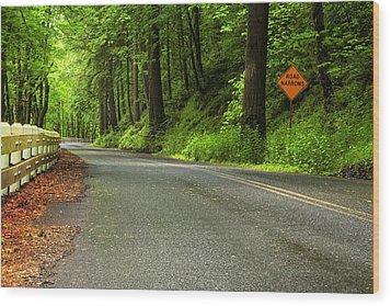 The Road Ahead Wood Print by Andrew Soundarajan