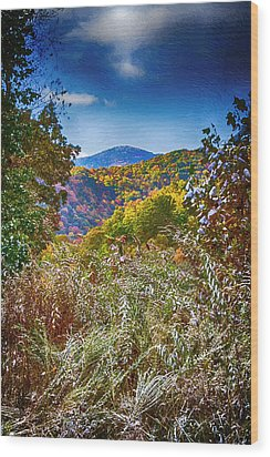The Road To Cataloochee On A Frosty Fall Morning Wood Print by John Haldane