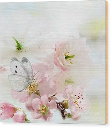 The Silent World Of A Butterfly Wood Print by Morag Bates