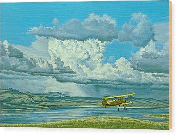 The Sky-stearman Biplane Wood Print by Paul Krapf