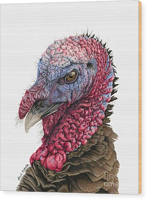 The Turkey Wood Print by Sarah Batalka