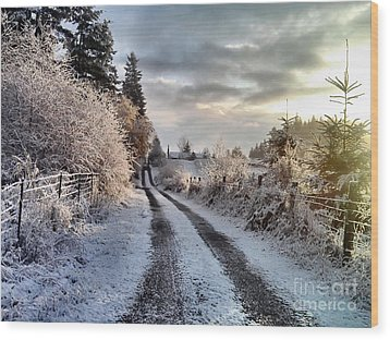 The Way Home Wood Print by Rory Sagner