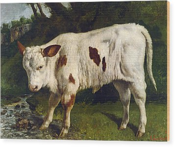 The White Calf Wood Print by Gustave  Courbet