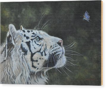 The White Tiger And The Butterfly Wood Print by Louise Charles-Saarikoski