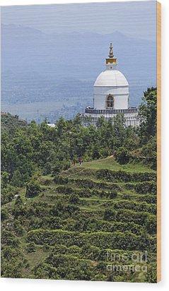 The World Peace Pagoda Pokhara Wood Print by Robert Preston