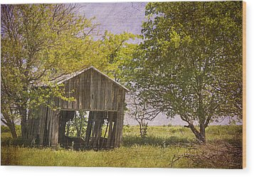 This Old Barn Wood Print by Joan Carroll