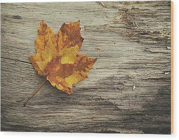 Three Leaves Wood Print by Scott Norris