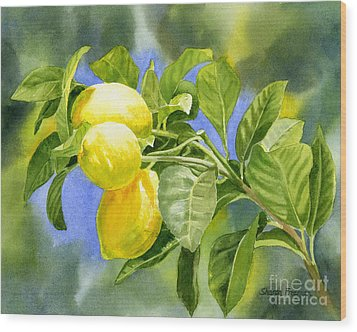 Three Lemons Wood Print by Sharon Freeman
