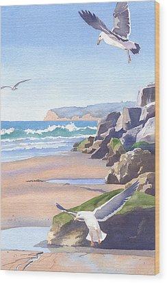 Three Seagulls At Coronado Beach Wood Print by Mary Helmreich