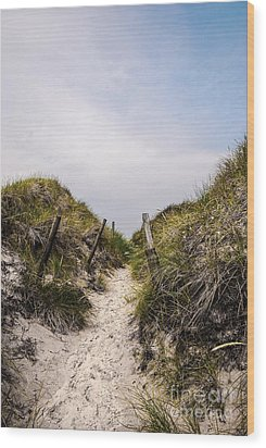 Through The Dunes Wood Print by Hannes Cmarits
