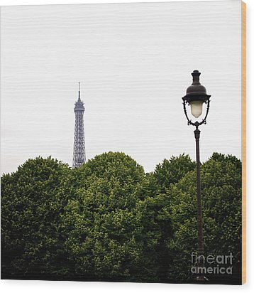 Top Of The Eiffel Tower And Street Lamp. Paris.france. Wood Print by Bernard Jaubert