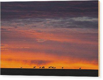 Topi Herd Sunrise Wood Print by Mike Gaudaur