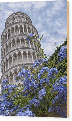 Tower Of Pisa With Blue Flowers Wood Print by Melany Sarafis