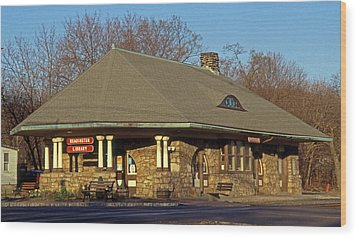 Train Stations And Libraries Wood Print by Skip Willits