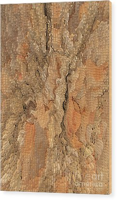 Tree Bark Abstract Wood Print by Cindy Lee Longhini