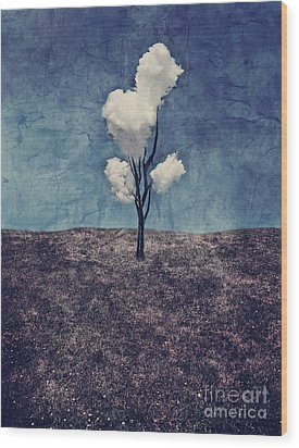 Tree Clouds 01d2 Wood Print by Aimelle