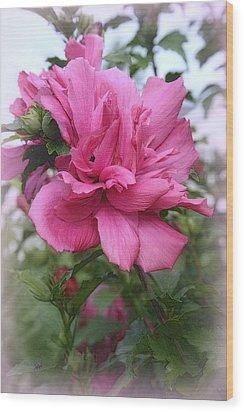 Tree Rose Of Sharon Wood Print by Kay Novy