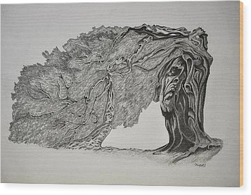 Tree With Faces Wood Print by Glenn Calloway