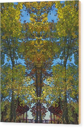 Trees Alive Wood Print by Susan Leggett