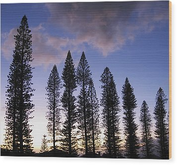 Trees In Silhouette Wood Print by Adam Romanowicz