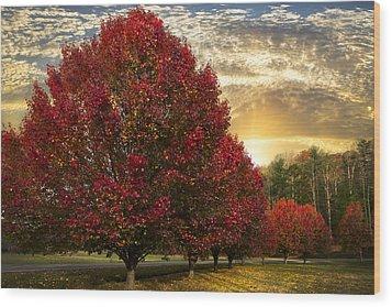 Trees On Fire Wood Print by Debra and Dave Vanderlaan