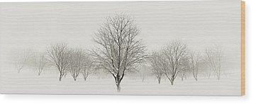 Treeternity Wood Print by Jim Speth