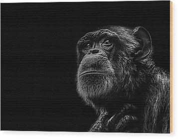 Trepidation Wood Print by Paul Neville