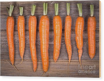 Trimmed Carrots In A Row Wood Print by Jane Rix