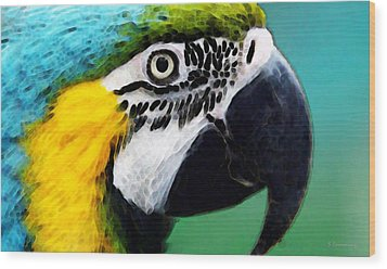 Tropical Bird - Colorful Macaw Wood Print by Sharon Cummings