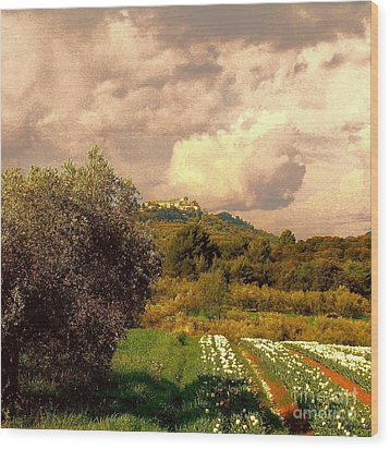 Tulips Field And Lurs Village In Provence France Wood Print by Flow Fitzgerald