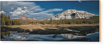 Tuolumne Meadows Wood Print by Cat Connor