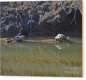 Turtle And Frog On A Log Wood Print by Al Powell Photography USA