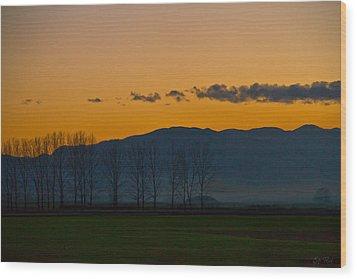 Twilight Mist Wood Print by Eti Reid