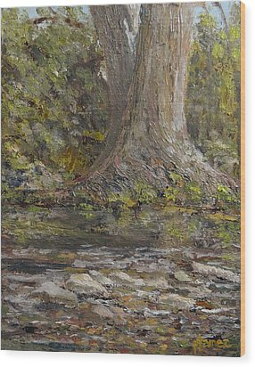 Twin Sentinels On The Cibolo Wood Print by Pauly Tamez