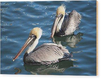 Two Beautiful Pelicans Wood Print by Cynthia Guinn