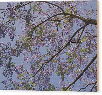 Under The Jacaranda Tree Wood Print by Rona Black