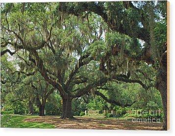 Under The Oaks Wood Print by Bob Sample