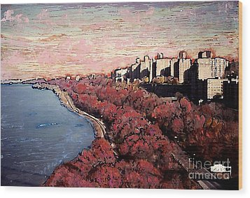 Upper Manhattan Along The Hudson River Wood Print by Sarah Loft