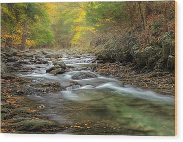Upstream Fog Wood Print by Bill Wakeley