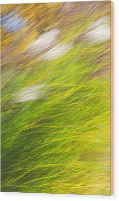 Urban Nature Fall Grass Abstract Wood Print by Christina Rollo