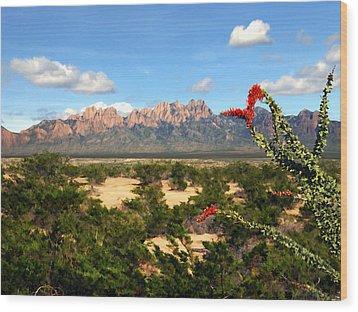 View From Roadrunner Wood Print by Kurt Van Wagner