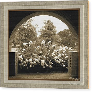View To The Garden Wood Print by Darla Wood
