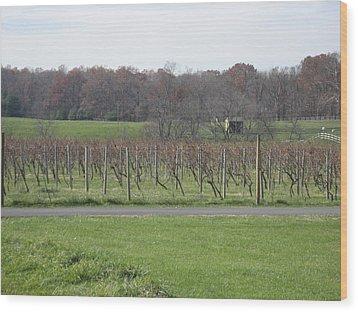 Vineyards In Va - 121234 Wood Print by DC Photographer